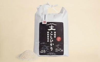 特別栽培米  奥能登こしひかり(精米)  5kg