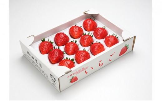 [№5722-0140]旬の大玉・甘熟いちごデラックス2品種セット