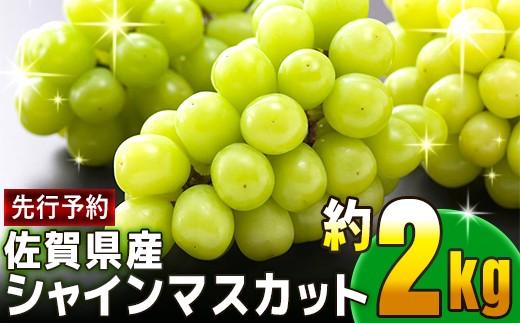 B0-121 【先行予約】佐賀県産シャインマスカット 約2kg(3~5房)