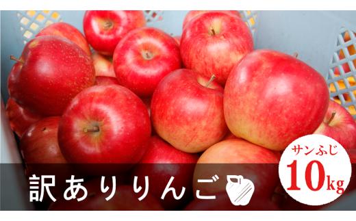 029H31-002《先行受付2019年産 秋お届け》訳ありふぞろいりんご