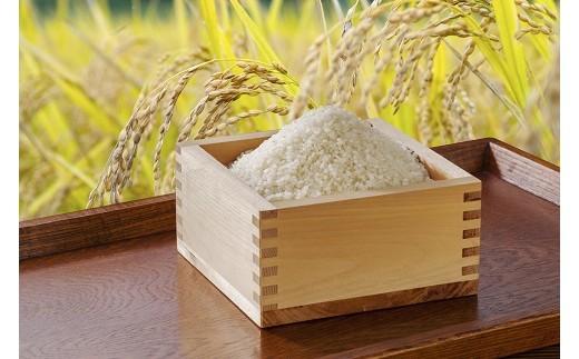 40 特別栽培米ななつぼし(精米) 15kg【新米のため10月下旬以降発送】