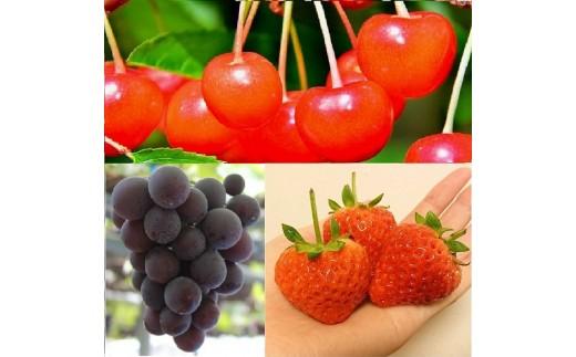旬の果物をお届けします