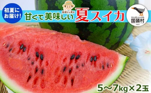 【2019年5月発送!】国頭マージ 赤土「夏スイカ」5~7Kg×2玉