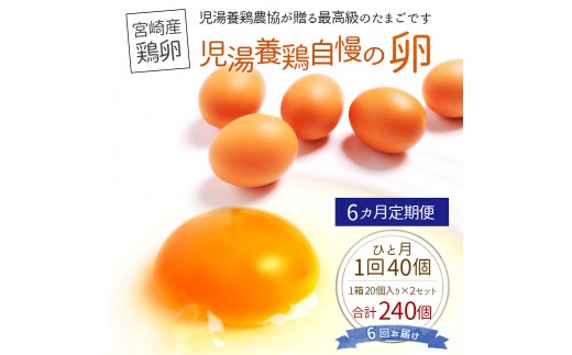 <児湯養鶏自慢の卵 計240個(40個×6回)>6ヶ月定期便【D15】
