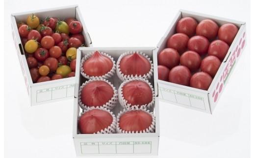 20-14 めちゃうまトマト食べ比べセット