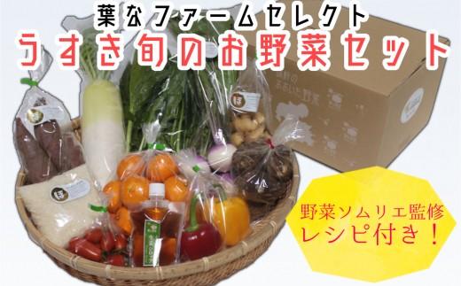 野菜ソムリエが厳選!葉なファームセレクト「うすき旬のお野菜セット」
