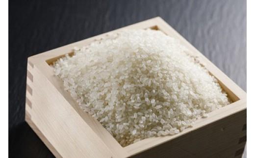 丹波市産コシヒカリ 「丹波ひかみ米」10kg