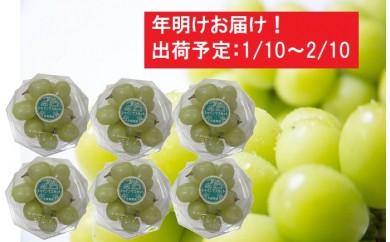 [№5898-0125]年明け 津軽産 徳用シャインマスカット約1.2kg(200g×6)
