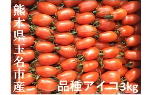 AH4 ミニトマト アイコ 熊本県玉名市産