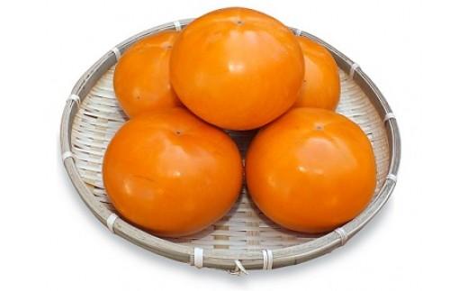 JK-01 でっかくて甘い柿 「輝太郎(きたろう)」(3kg)