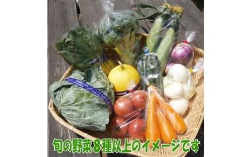 千葉県内最大級の直売所「しょいか~ご」から食育ソムリエが厳選した地元ちば産の野菜8種以上をお届けします。