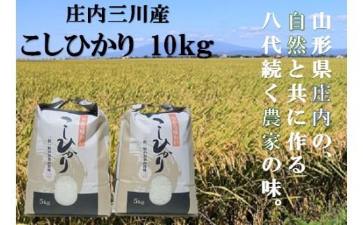 大沼ファームの【元年産・精米】三川町産コシヒカリ10kg