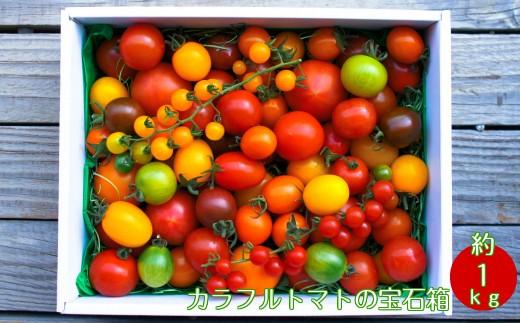 A-43.カラフルトマトの宝石箱