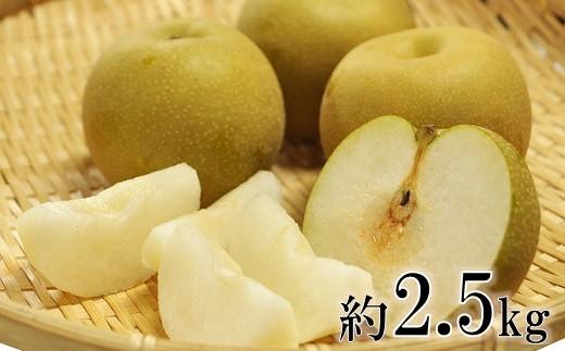 庄内の和梨(1箱約2.5kg)