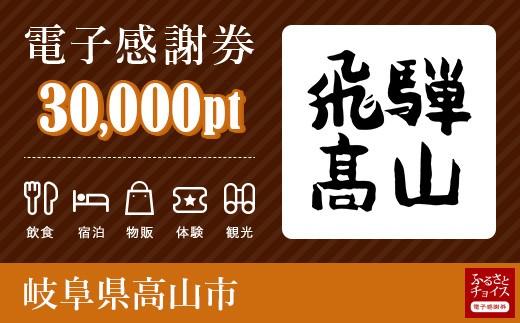 旅行・食事・観光・遊びに使える!高山市 電子感謝券 30,000ポイント