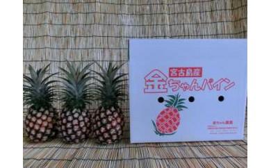 ★早期受付★宮古島産ピーチパイン 3個セット