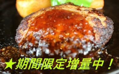 [№5563-0238]【GW・新元号企画】期間限定増量中!馬肉ハンバーグ120g×20個
