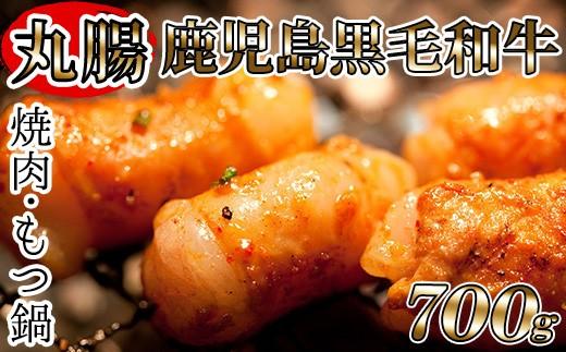 AS-028 もつ鍋や焼肉に!鹿児島県産黒毛和牛ホルモン(丸腸) 約700g