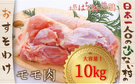 大川村土佐はちきん地鶏モモ肉10kg【日本一人口の少ない村】