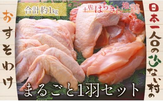 大川村土佐はちきん地鶏一羽まるごとセット!【日本一人口の少ない村】