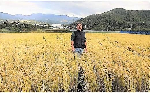 0098-102 平成30年度産 自然栽培8年目のササニシキ玄米、分付米、5kg