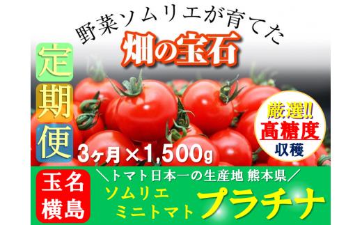 G4 【定期便】ソムリエミニトマト・プラチナ(1.5kg×3か月)