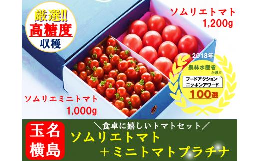 G2 ソムリエトマトセット トマト(1.2kg)+ミニトマト・プラチナ(1kg)