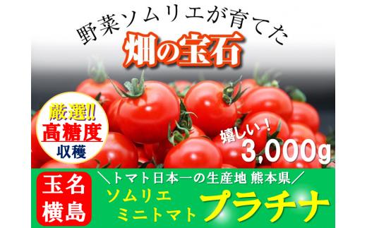 G1 ソムリエミニトマト・プラチナ(3kg)