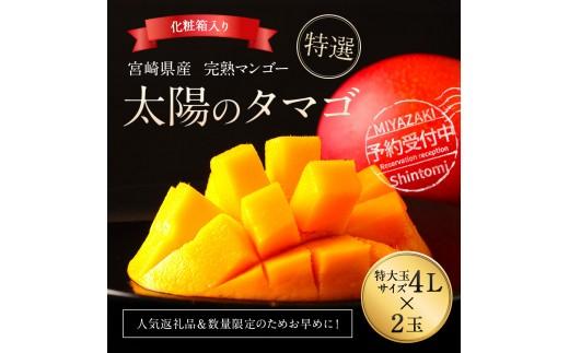 宮崎県産 完熟マンゴー<太陽のタマゴ 約1kg (4L×2玉) 化粧箱入>※2020年4月下旬~7月下旬の期間内に順次出荷【E94】