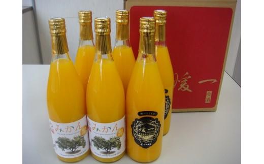 F23-5.高級柑橘ストレートジュース(媛一みかん・媛一まどんな)