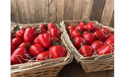 甘さ抜群!!トマト嫌いも食べられるトマトベリー H004-016