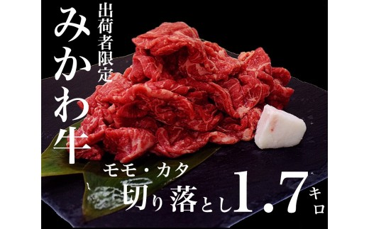 ふるさとチョイス | 牛肉 みかわ牛