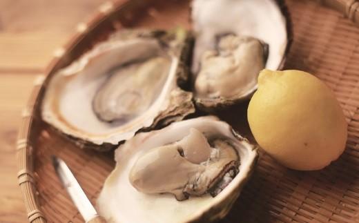 R308 九十九島岩牡蠣(いわがき)小夏(こなつ)【400pt】