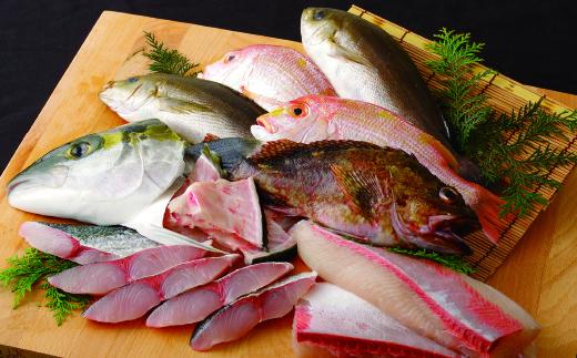 R334 五島列島 旬の地魚大漁セット(約3人前)【500pt】