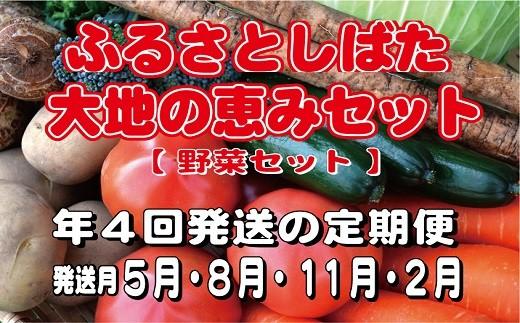 C40 【定期便:年4回(5月~)】 ふるさとしばた大地の恵み野菜セット