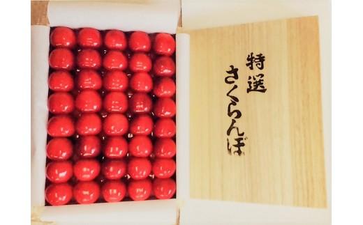 C01-302 贈答用さくらんぼ(紅秀峰 手詰め1㎏)