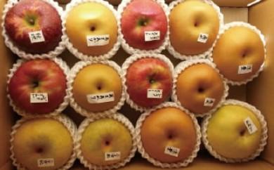 りんご・梨 味比べセット 5キロ箱(旬のりんご・梨3種類以上♪)