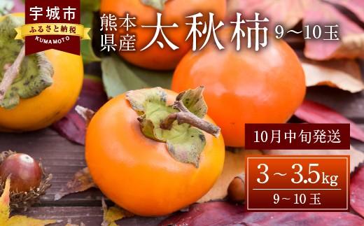 【10月発送】熊本県産 太秋柿 3~3.5kg 柿 カキ フルーツ