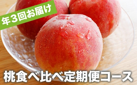 B-502 小布施町 桃食べ比べ定期便コース(約1.5㎏3回)