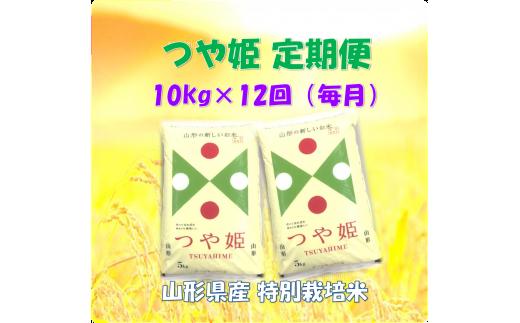 D-0097 ☆特別栽培米「つや姫(精米)」10kg×12回(毎月)定期便