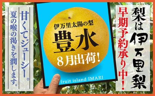 B115初物!伊万里太陽の梨自宅用8月出荷「豊水」(5kg)