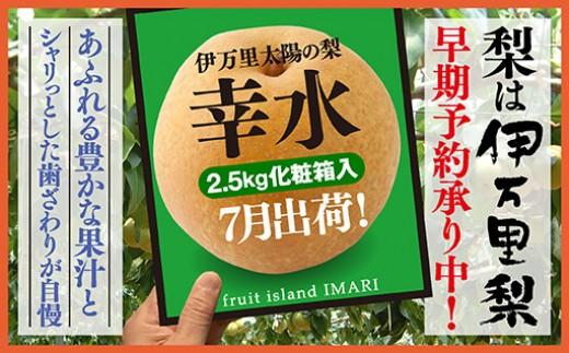 B113初物!伊万里梨7月出荷「幸水」化粧箱入(2.5kg)