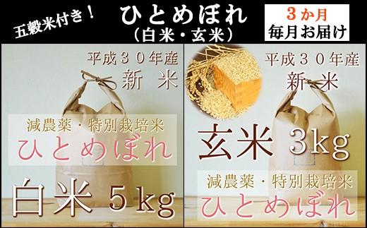【050-014】[定期3回]有機肥料栽培「ひとめぼれ」白米5kg&玄米3kg