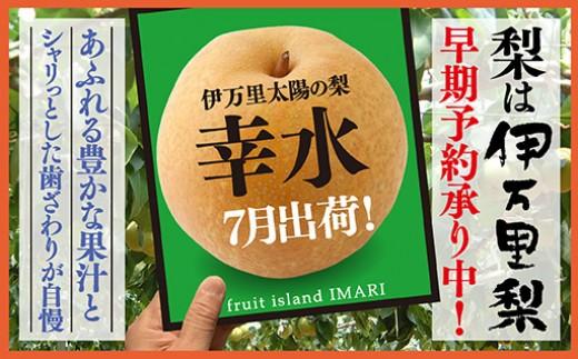 B114初物!伊万里太陽の梨自宅用7月出荷「幸水」(たっぷり5kg)