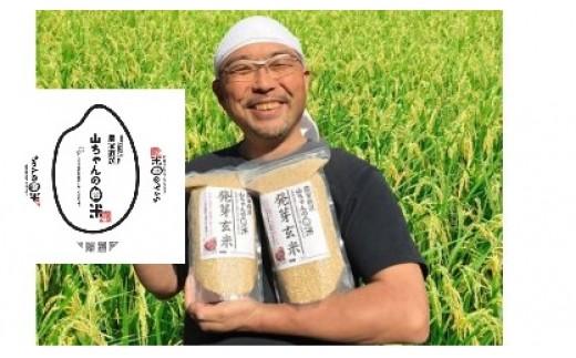 16.農家直送『山ちゃんの発芽玄米』1500g×2袋