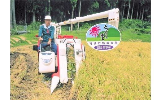 32.【新米】鳥取県認証特別栽培米 夢味米(若桜町産コシヒカリ)9kg