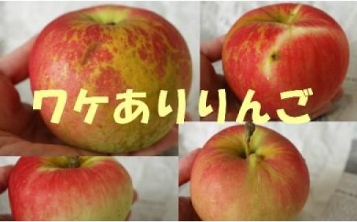 【先行予約】【6ヶ月定期便】ワケあり北上リンゴ 5Kgセット