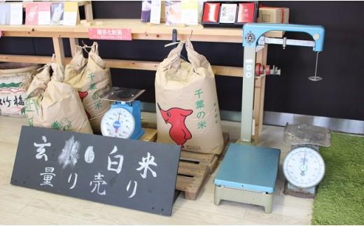 白米、玄米、イタリア米など色々なお米を量り売り
