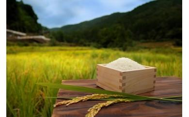 【定期便】とんさか米<5kg×12回定期便> 南島原市産ヒノヒカリ