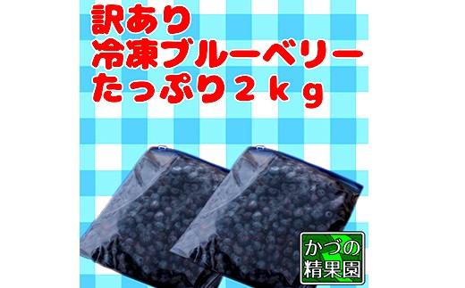 訳あり冷凍ブルーベリー【たっぷり2kg】
